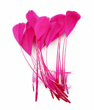 """10 pcs Stripped Coque Feathers Millinery and Crafts 5-7"""" HOT PINK"""