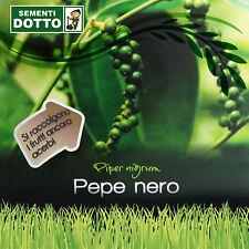 SEMI di PEPE NERO Piper nigrum seeds