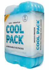 Slim & Long-Lasting Ice Pack for Lunch Box & Coolers - Freezer Packs (Set of 4)