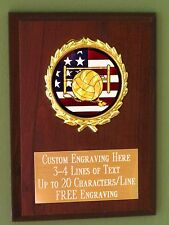 Volleyball/Sport/Flag Award Plaque 4x6 Trophy FREE engraving
