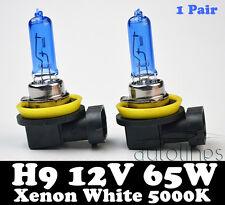 2 x H9 12V 65W Xenon White 5000k Halogen Blue Car Head Light Lamp Globes / Bulbs