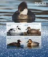 St. Vincent & The Grenadines 2015 MNH SS, Water Birds, Ducks (H76)