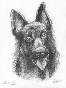 original drawing 15 x 19,5 cm 275LM art samovar Graphite dog German Shepherd