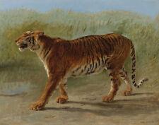 Bonheur Rosa Royal Tiger Marching Print 11 x 14  #5087