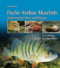 Fische Krebse Muscheln in heimischen Seen und Flüssen von Wolfgang Hauer (2007, Kunststoffeinband)