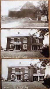 Springfield, Ontario, Canada 1910 THREE Photographs-MH Haley-Pure Bred Holsteins