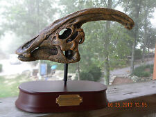 Dinosaur Parasaurolophus Skull model with stand and name plate jurassic park