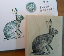 "Hare, rabbit art rubber stamp 2x2.25"" WM p16"