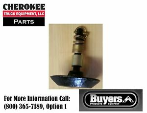 SnowDogg/Buyers Products 16121100, Shoe Assembly, HD/EX/CM Plow