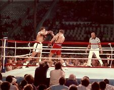 THE RUMBLE IN THE JUNGLE 8x10 Boxing Action Photo MUHAMMAD ALI vs GEORGE FOREMAN