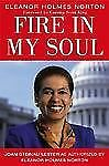 Fire in My Soul by Joan Steinau Lester (2003, Hardcover)