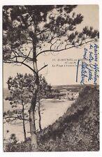 st-michel-en-grève  , la plage à travers les pins