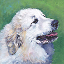 Great Pyrenees portrait CANVAS PRINT of dog painting by la shepard LSHEP 8x8