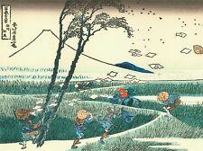 KATSUSHIKA HOKUSAI POESIE Old Master ARTE PITTURA STAMPA POSTER 30x40 cm 1794oma