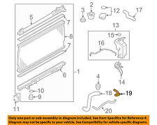 Infiniti NISSAN OEM 06-08 M35 3.5L-V6 Radiator-Hose Right 21631EG100