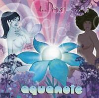 AQUANOTE the pearl (CD, album, 2002) lounge, deep house, very good condition,