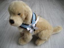Hundegeschirr Umfang 37 - 45 cm Hundehalsband Halsband Hundebekleidung Geschirr