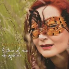 Red on Blue a place of Hope and Mysteries Hein Schneider Bernadette KUBE NUOVO