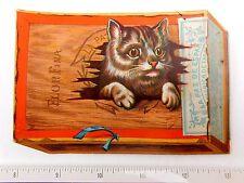 Lovely Die Cut Cigar Box w/ Cat Kitten Bon Ton Millinery Store, Reading, PA F46