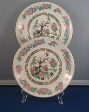 Crown Clarence Staffordshire Indian Tree - Set of 2 Saucers