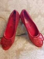Dorothy Wizard Of Oz Ruby Slippers Shoes