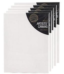 "30 x 40 cm CANVAS STRETCHED ARTIST PRIMED BOX FRAMED 100% COTTON ART 12 x 16"""