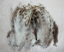 """50+ 5-7"""" Natural Grey Grizzly Chinchilla hackle feathers for Crafting, New"""