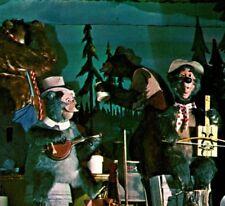 Country Bear Jamboree animatronics Walt Disney World Resort FL Vintage Postcard