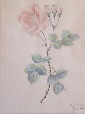 """VORONINE Jeanne Grand Dessin aquarellé et Signé """"Rose Queen Élisabeth"""" Périgueux"""