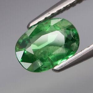 1.10Ct.Ravishing Color&Full Fire! Natural Top Green Tsavorite Garnet Tanzania