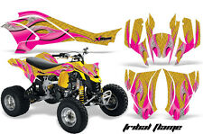 Can Am AMR Racing Graphics Sticker Kits ATV CanAm DS 450 Decals DS450 08-12 TFYP