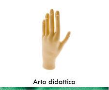 Arto Didattico Ricostruzione Unghie Professional Nails Art con Tip KyLua Italy