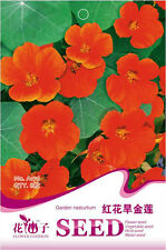Original Package 8 Red Nasturtium Seeds Tropaeolum Majus Flowers A176