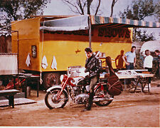 ROUSTABOUT ELVIS PRESLEY GREAT  PHOTO