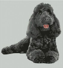 "Poodle Black Dog  Puppy Counted Cross Stitch Kit 11.5"" x 11.5"" D2400"