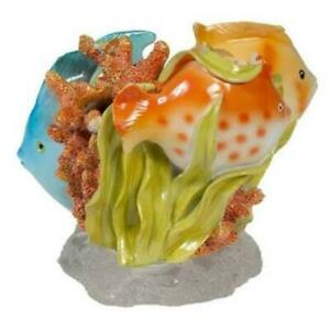 Creative Bath RBF60MULT Rainbow Fish Tropical Toothbrush Holder