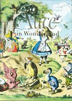 Alice in Wonderland and Through the Looking Glass (Illustrated Junior Library…