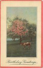 c1910 Db Postcard K040 Birthday Greetings Cherry Plum Tree Cow Flowers Blossom