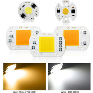 COB LED Lamp Chip 10W 20W 30W 50W 3-9W AC 220V LED Bulb Lamp no Need Driver