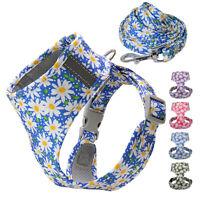 Reflective Dog Harness and Leash Set Soft Mesh Padded Puppy Vest Adjustable SML