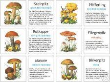 Pilze, Bild- u. Infokärtchen, Montessori, Freiarbeit