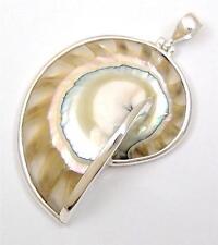 "2"" Transparent Nautilus Shell 925 Sterling Silver pendant ; SC169-R"