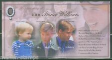 MALDIVES 21st BIRTHDAY PRINCE WILLIAM  SHEET  SCOTT#2700   MINT NH