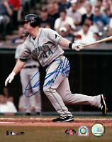 Toby Hall Signed 8X10 Photo Autograph Tampa Bay Devil Rays MLB COA Swinging
