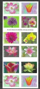 MAJOR MISPERF GARDEN BEAUTY STAMP BOOKLET of 20 US Stamps #5558-#5567a, 2021