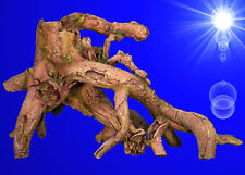 Aquarium Deko große ❤️ 64 cm!! MANGROVEN WURZEL XXL ❤️ Welse Dekoration Zubehör