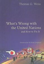 What's Wrong With the United Nations and How to Fix it Polity What's Wrong Seri