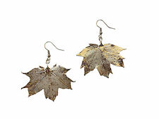 Plated Earrings French Wire Dangle, Medium Sugar Maple Real Leaf Silver Dipped,