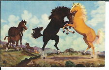 CA-179 Battle of The Stallions, Artist Signed Vern Parker Chrome Postcard Horses