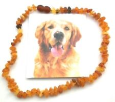 Amber Chain for Dogs and Cats ca.33-35 cm 100% Nature Amber Necklace Nr.25